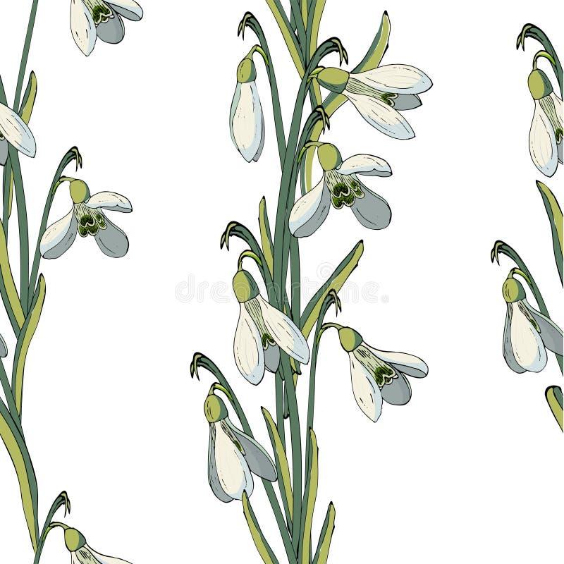 Vector bloemen naadloos patroon met sneeuwklokjes royalty-vrije illustratie
