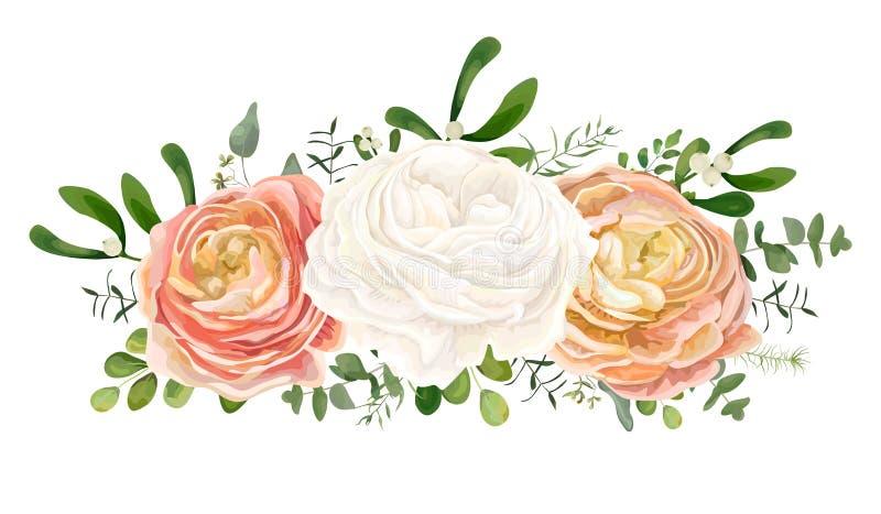 Vector bloemenboeket met Wit roze, perzikranunculus bloem E vector illustratie