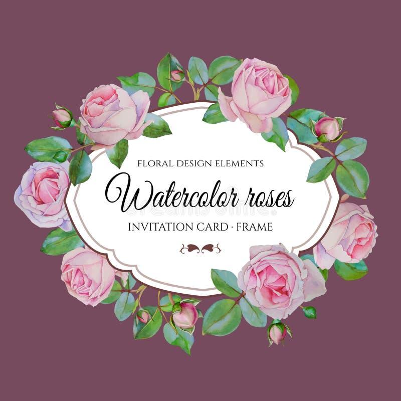 Vector bloemenkader met waterverf roze rozen op violette achtergrond vector illustratie