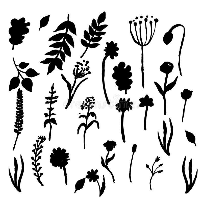 Vector bloemenreeks Grafische inzameling met bladeren en bloemen, die elementen trekken De lente of de zomerontwerp voor uitnodig stock illustratie