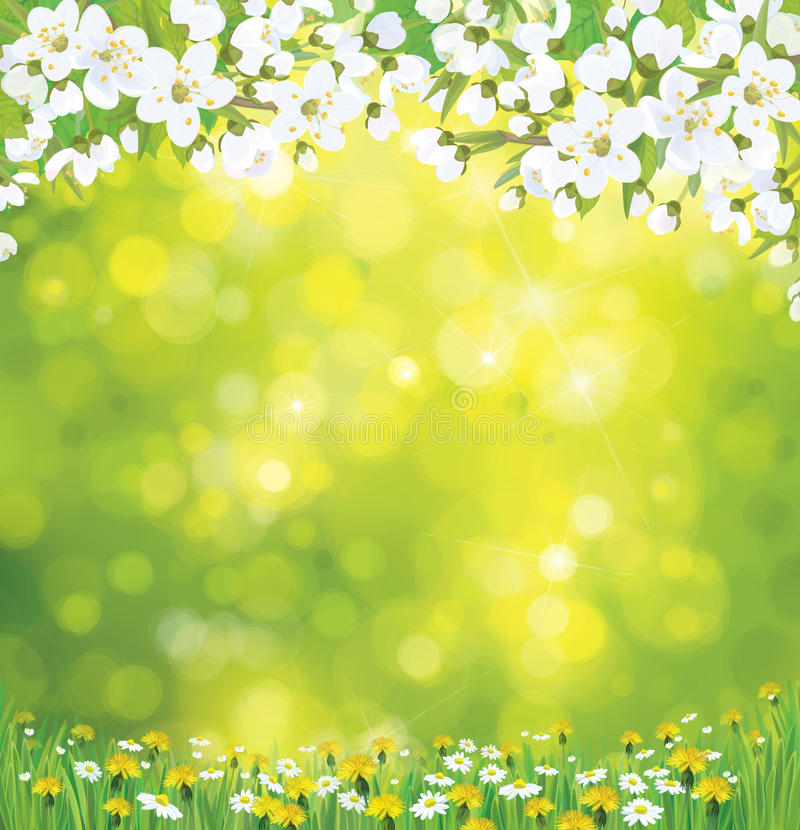 Vector blossoming tree on spring background. stock illustration