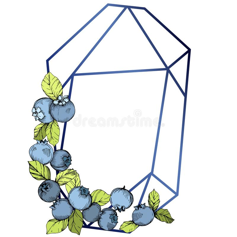 Vector Blueberry blue and green engraved ink art. Berries and green leaves. Frame border crystal ornament square. royalty free illustration