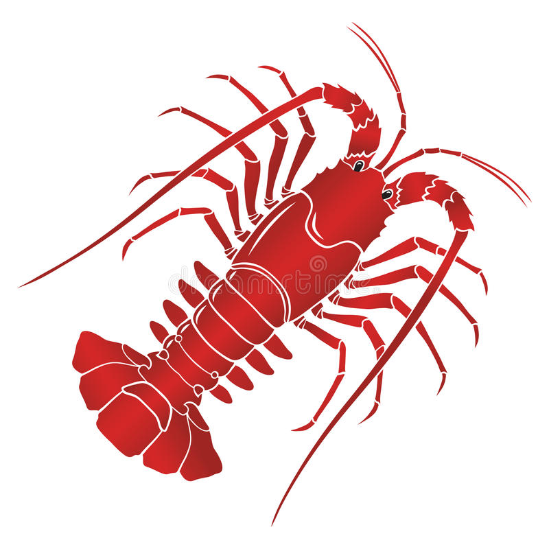 Vector boiled spiny or rock lobster vector illustration