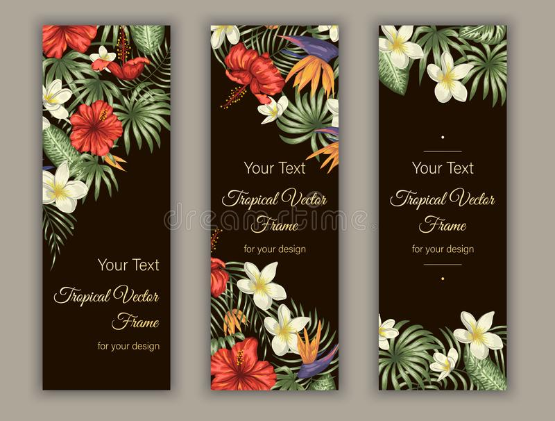 Vector bookmarks with green tropical leaves, plumeria, strelitzia and hibiscus flowers on black background royalty free illustration