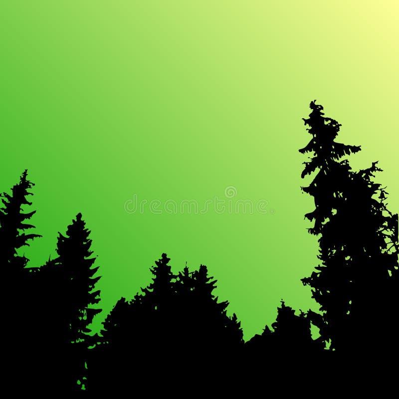 Vector boslandschapssilhouet Realistische bomen, houtsilhouetten in nacht en avondhemel Openluchtaardscène vector illustratie