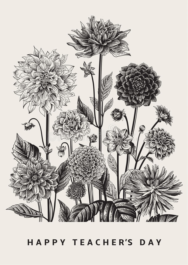 Free Vector Botanical Floral Illustration. Happy Teacher`s Day. Dahlias. Stock Photography - 92494372