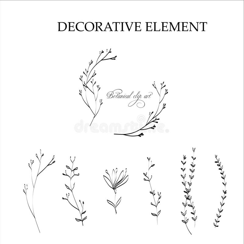 Vector botanical line art illustration. Silhouette isolated royalty free stock photography