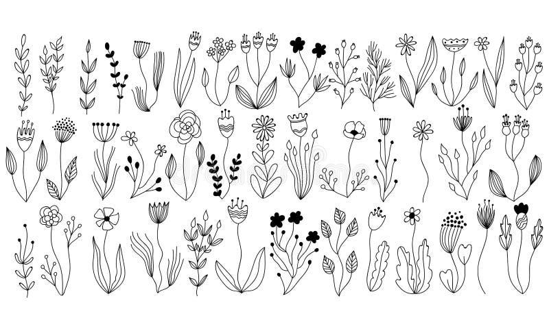 Vector botanische inzameling van bloemen en kruidenelementen geïsoleerde vectorinstallaties, takken en bloemen in het ontwerp van stock illustratie