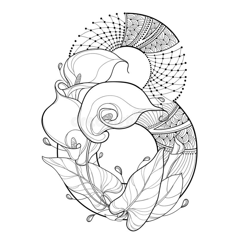 Vector bouquet of outline Calla lily flower, ornate leaf and number 8 in black isolated on white background. Contour style. royalty free illustration