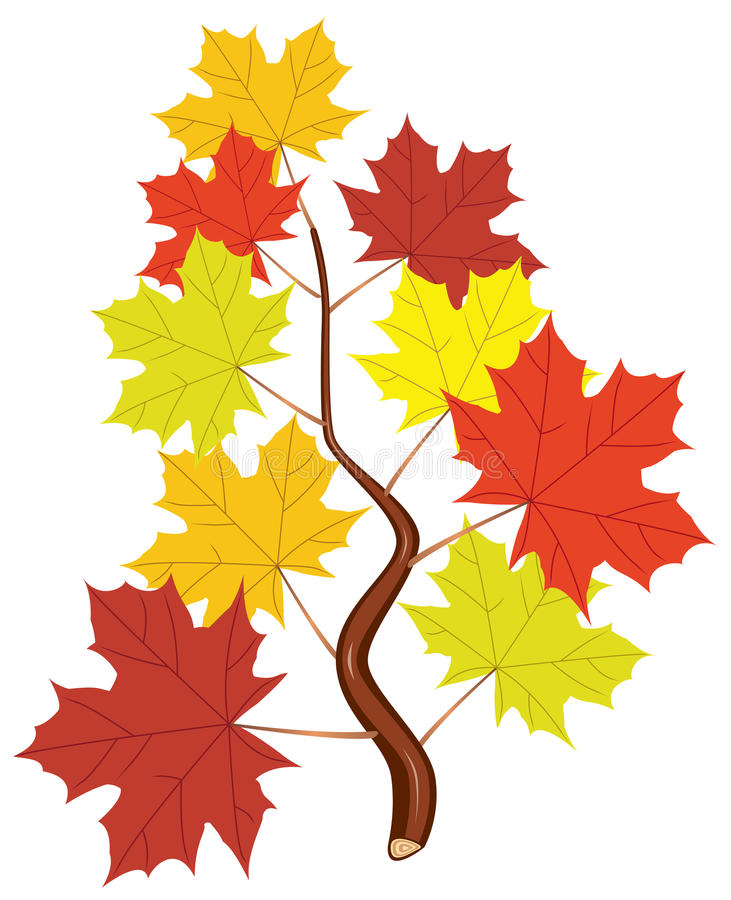 Download Vector Branch With Fall Maple Leaves Stock Photography - Image: 22438702