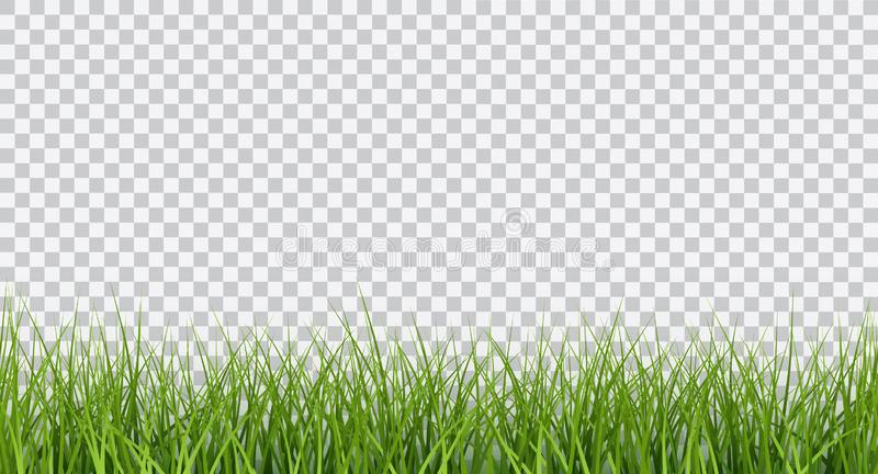 Vector bright green realistic seamless grass border isolated on transparent background royalty free illustration