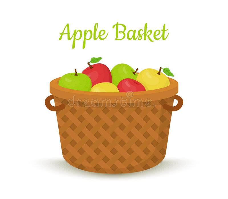 Vector brown basket with apples. Bright fruits. In bucket, wooden container in cartoon style stock illustration