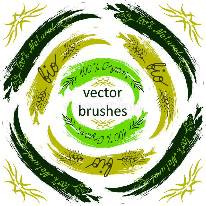 Vector brush - Bio, Organic, Natural on background stock illustration
