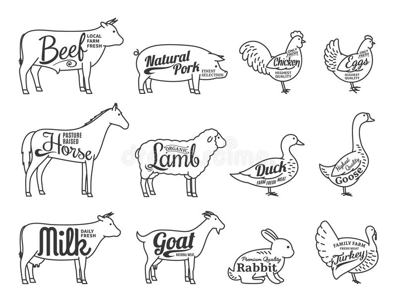 Vector Butchery Logo. Farm Animals Thin Line Icons Collection Is. Set of butchery logo. Farm animals with sample text. Farm animals thin line icons collection royalty free illustration