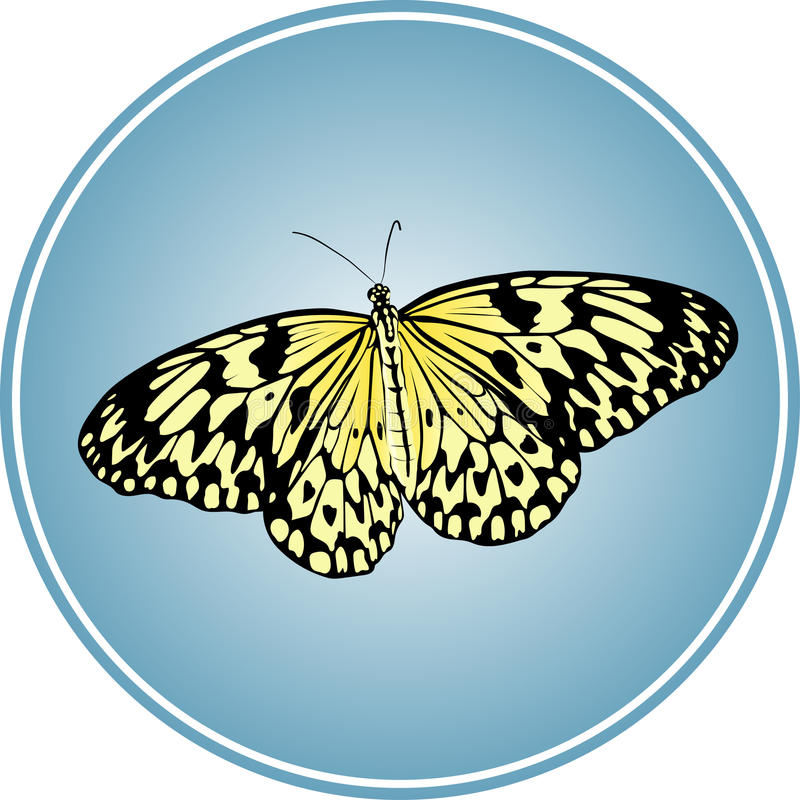 Vector butterfly in the circle stock illustration