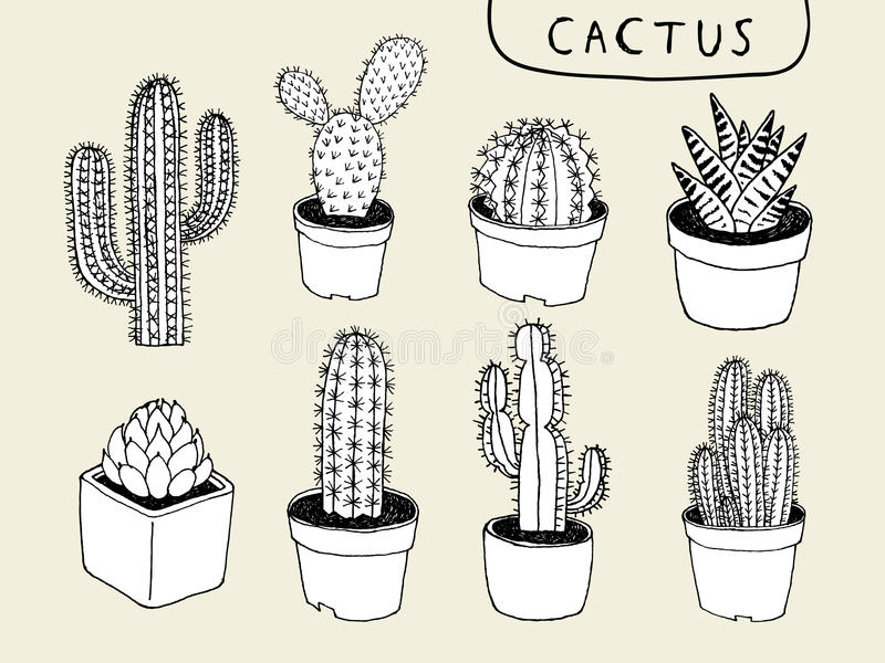 Line Drawing Cactus : Vector cactus hand drawn stock illustration of