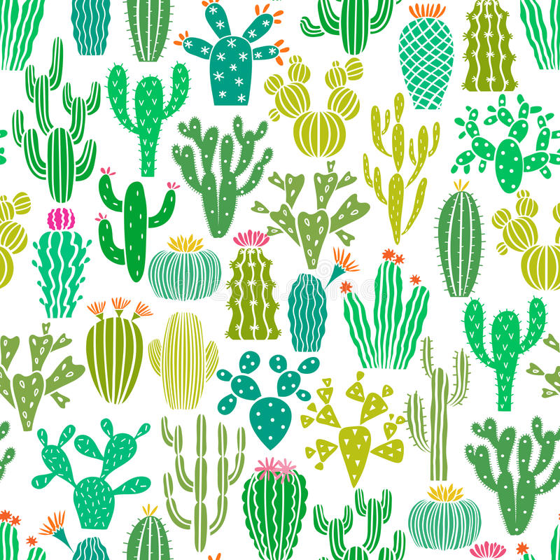 Vector cactus plant seamless pattern. Cacti flower background, print royalty free illustration