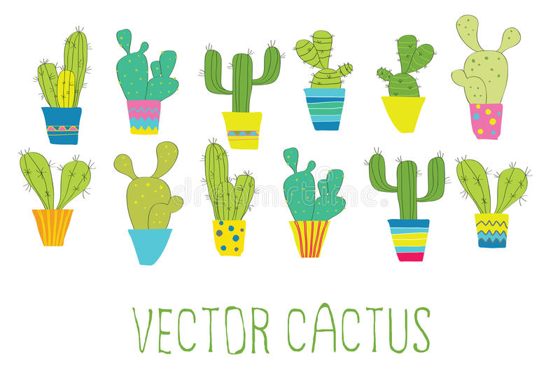 Vector cactus royalty free stock images