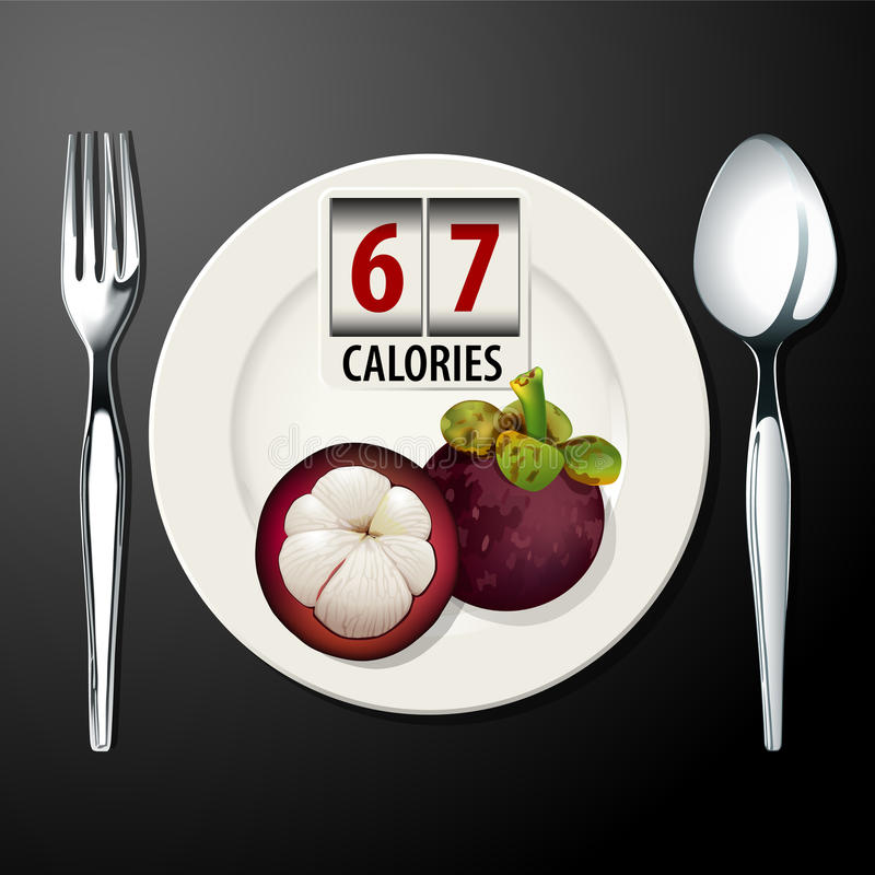 Vector of Calories in Mangosteen. EPS.10 royalty free illustration