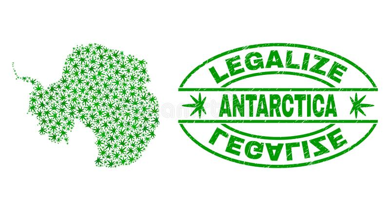 Cannabis Leaves Collage Antarctica Continent Map with Legalize Grunge Stamp Seal stock illustration