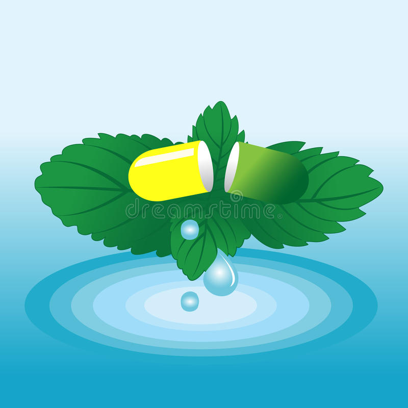 Vector Capsule On A Green Leaf Mint Royalty Free Stock Photography