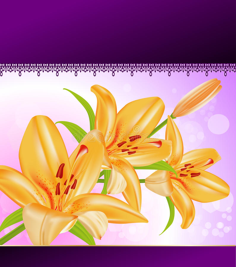 Download Vector card: orange lilies stock vector. Image of card - 18702486