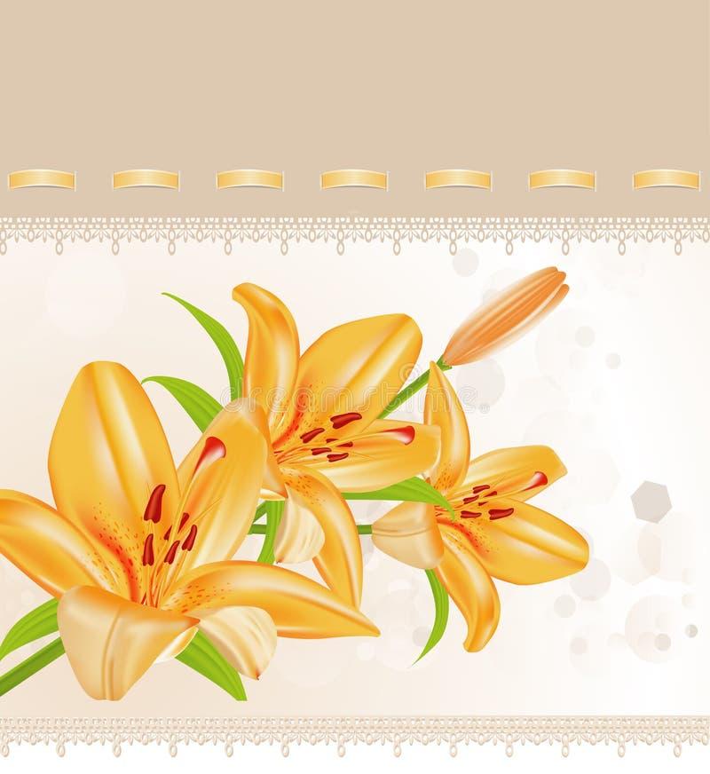 Download Vector card: orange lilies stock vector. Image of nature - 18702568