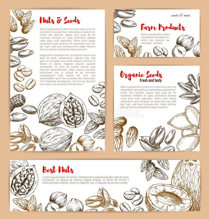 Vector cartazes do esboço das porcas e das sementes do fruto ilustração stock