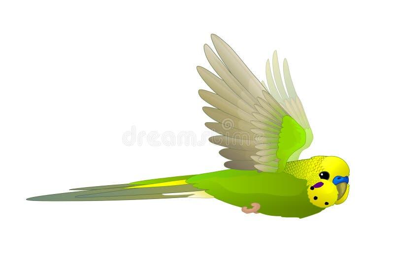Vector cartoon animal clip art vector illustration