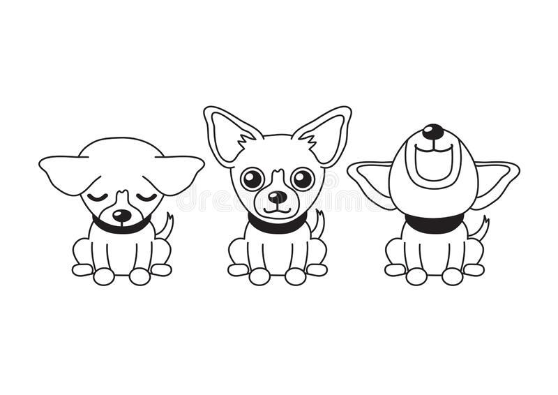Vector cartoon character chihuahua dog poses. For design vector illustration