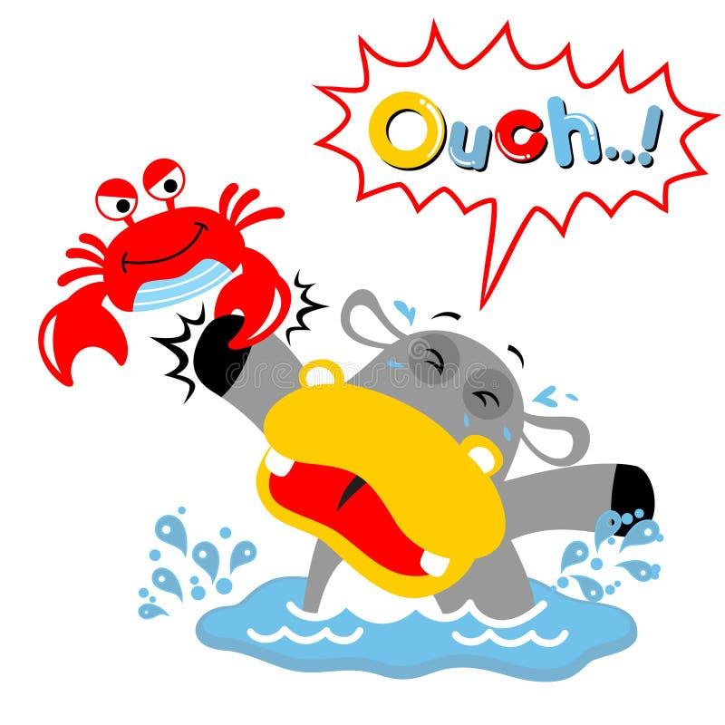 Vector cartoon of crab clamping hippos hand royalty free illustration