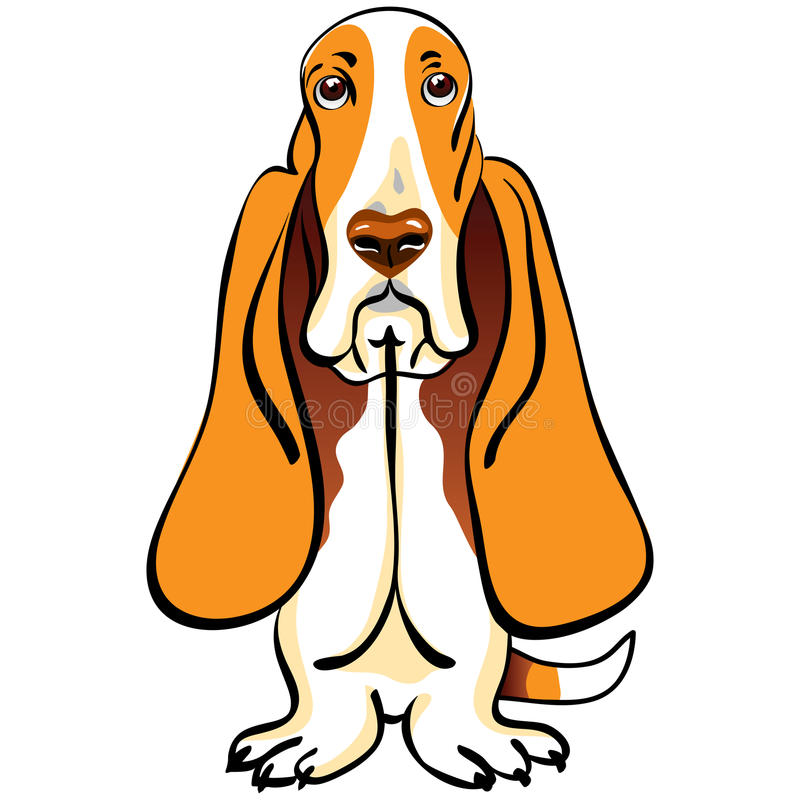 Vector Cartoon Dog Basset Hound Breed Stock Vector ...