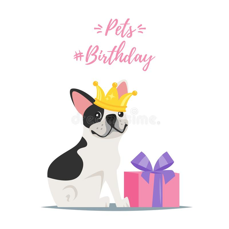 Dog Birthday party greeting card. Vector cartoon style illustration of Pets birthday greeting card with present and happy dog - French Bulldog i n golden crown vector illustration