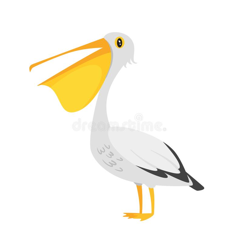 Zoo animal - pelican vector illustration