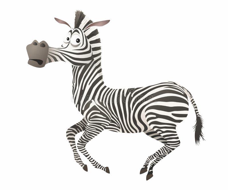 Vector cartoon zebra stock illustration