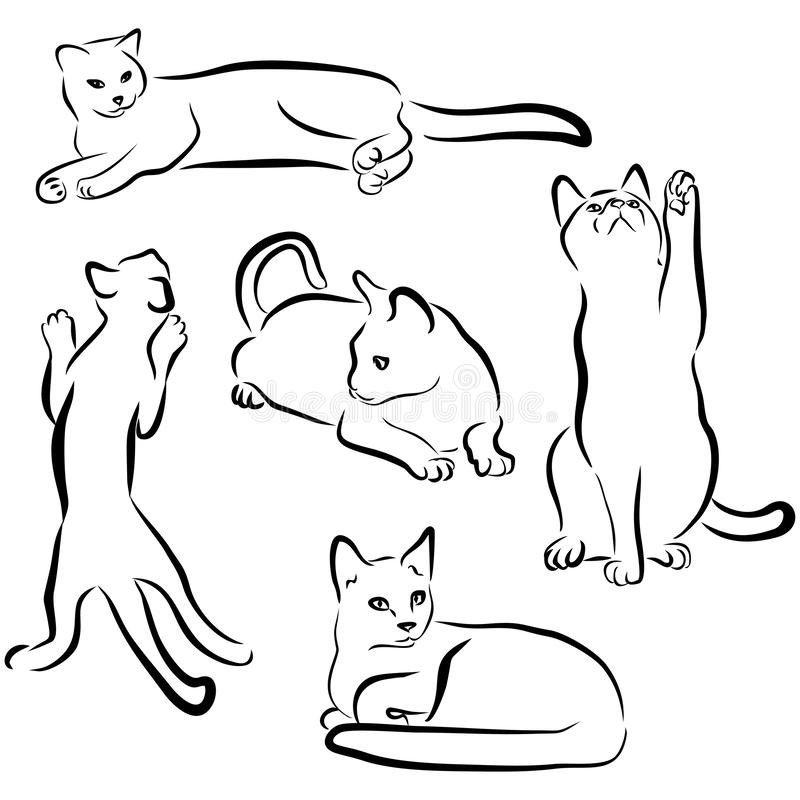 Vector cats silhouettes collection isolated on white background. Black contours of animals. Cat drawn in different poses: playing. Sitting, lying. Sweet home vector illustration