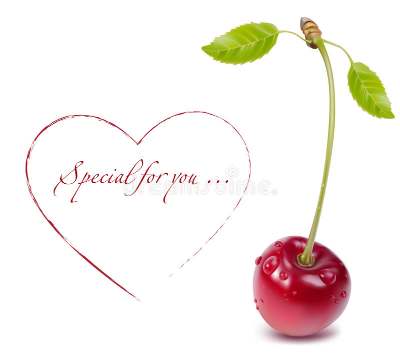 Free Vector Cherry. Stock Images - 10770704