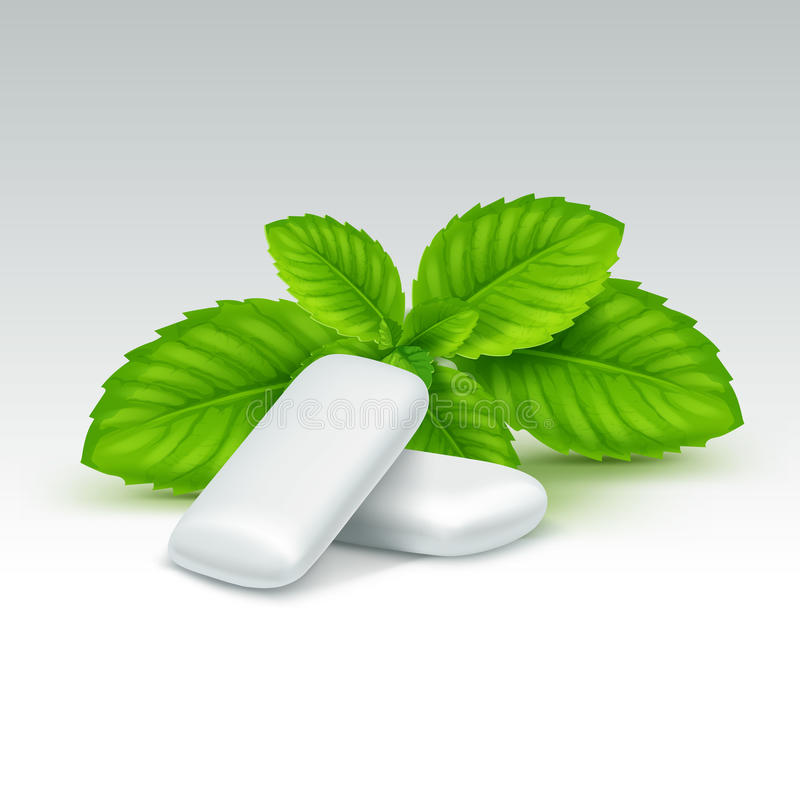 Vector Chewing Gum with Fresh Mint Leaves vector illustration