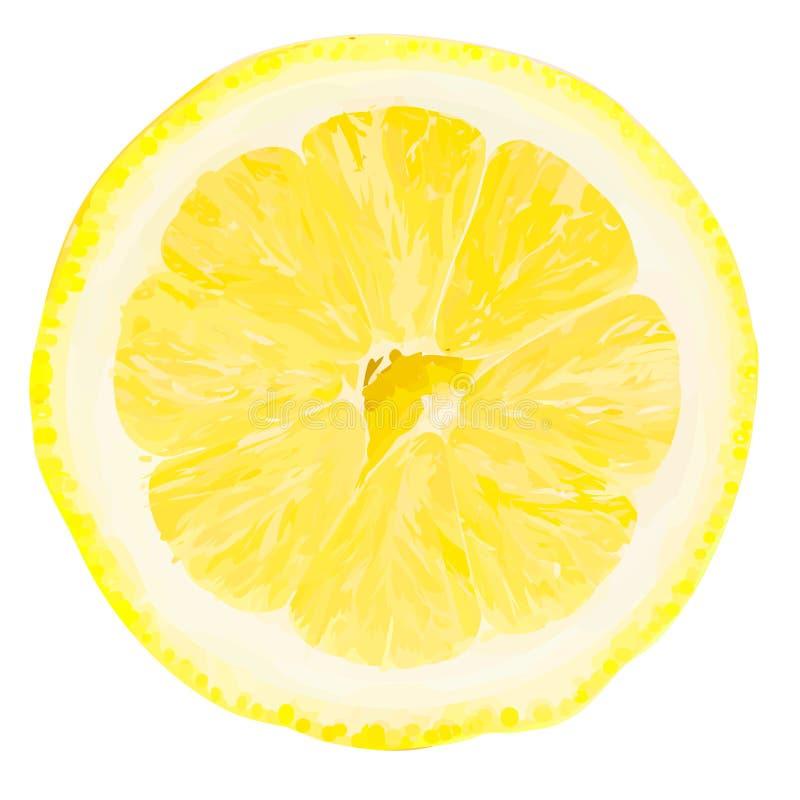 Vector citroenplak. stock foto