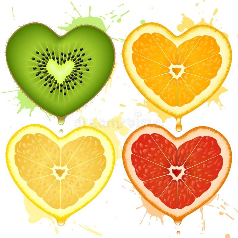 Vector citrusvruchtenharten vector illustratie