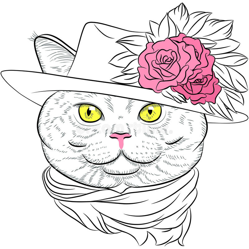 Vector closeup portrait of the British cat hipster lady royalty free stock photos