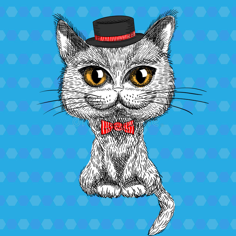 Vector closeup portrait of the British cat hipster royalty free stock photos