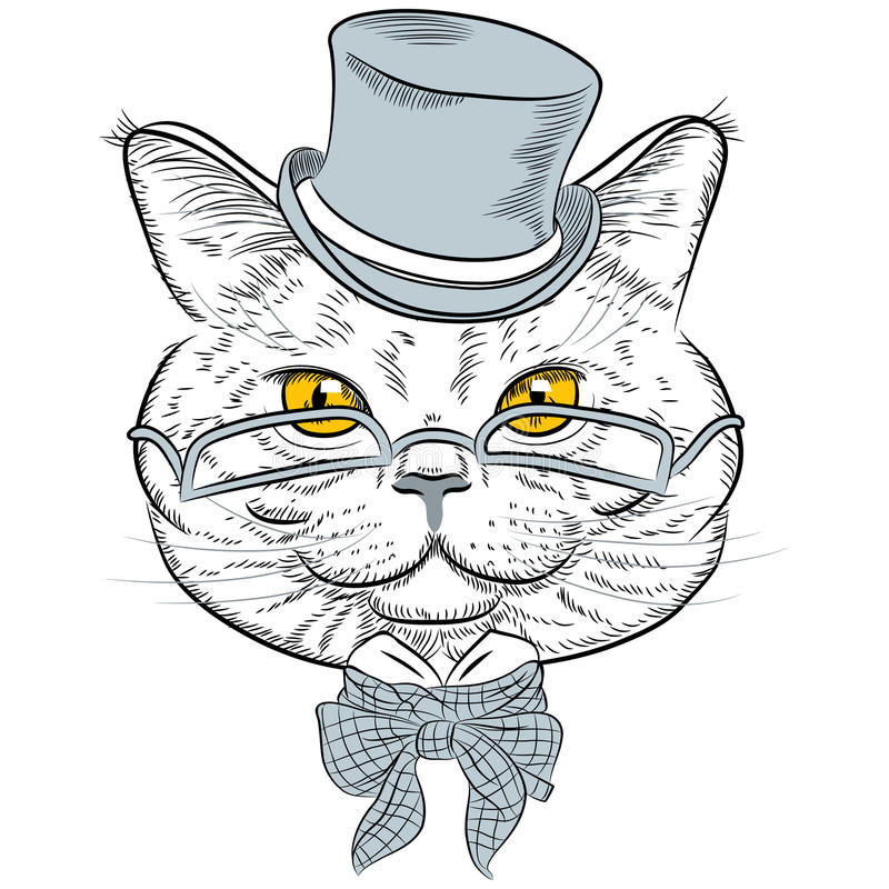 Vector closeup portrait of the British cat hipster stock images