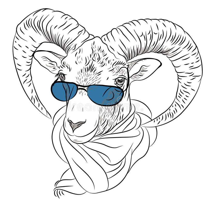 Vector closeup portrait of funny Alpine ibex royalty free stock images