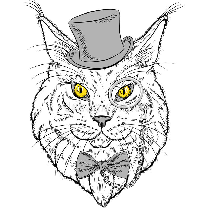 Vector closeup portrait of the Maine Coon cat hipster stock photo