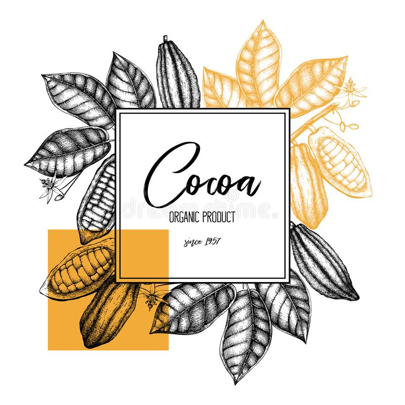 Vector Cocoa tree illustration. Vintage background with hand drawn with leaves, flowers, fruits and beans. Botanical template desi royalty free illustration