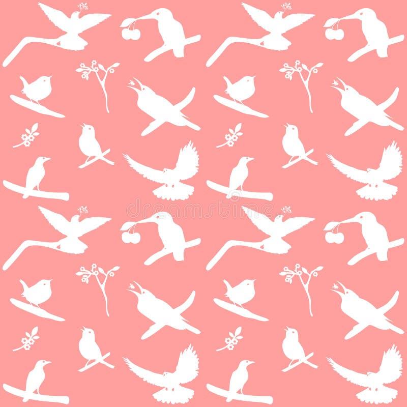 Vector a coleção de silhuetas do pássaro em um fundo cor-de-rosa ilustração do vetor
