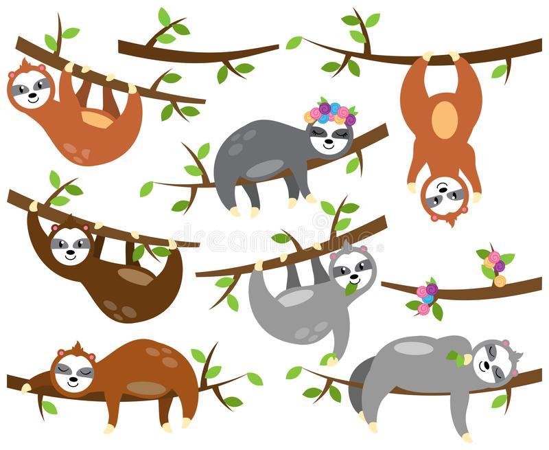 Vector Collection of Cute Sloths in Different Positions and with Babies royalty free illustration