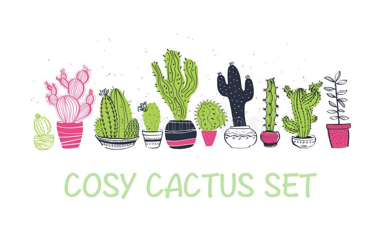 Vector collection of hand drawn different cactus shapes standing in a row isolated on white background. stock illustration
