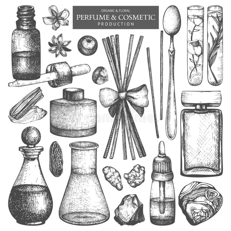 Vector collection of jars and bottles. Vintage Hand drawn Perfumery and cosmetics production ingredients set. Aromatic and medicin. Al material royalty free illustration